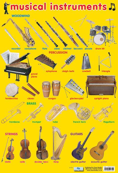 cool let s learn the musical instruments