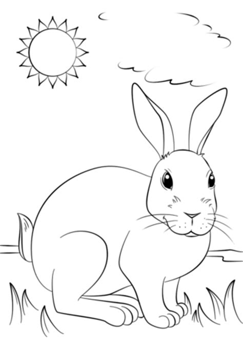 bunny coloring pages realistic realistic rabbit coloring coloring pages