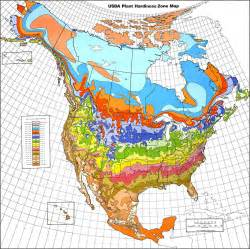 zones map understanding world hardiness zones plant hardiness