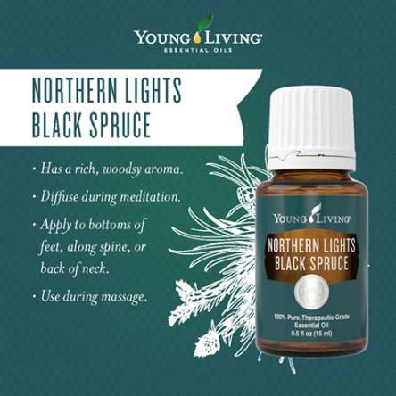 Northern Lights Black Spruce Essential Obsessed