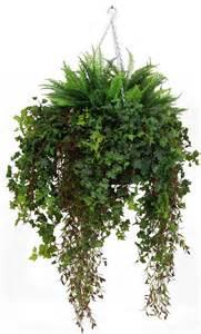 best indoor hanging plants indoor hanging plants indoor plants more decor home