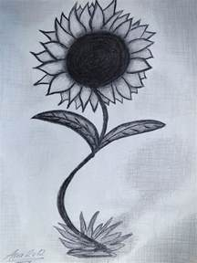 the sunflower drawing by ana leko nikolic