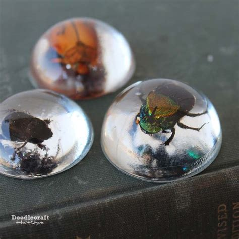 where to buy resin for jewelry beetles in resin jewelry