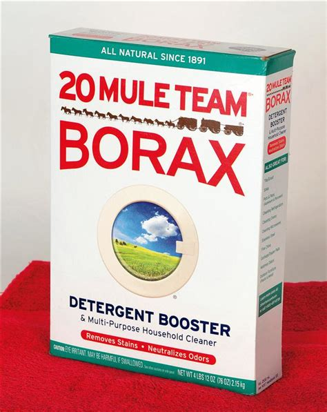 is borax safe for dogs safety is there a way of getting rid of ants that s safe for my cats pets stack