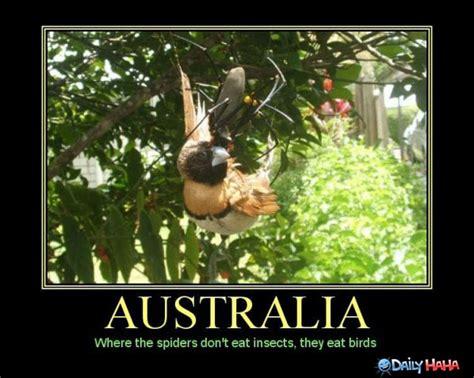 Australia Meme - funny australian quotes quotesgram