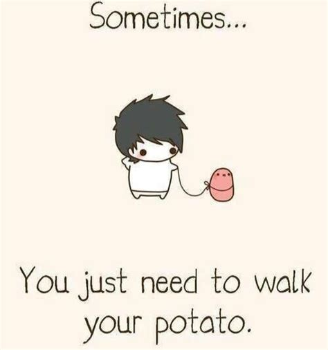 Meme Potato - 1000 ideas about potato meme on pinterest potato humor