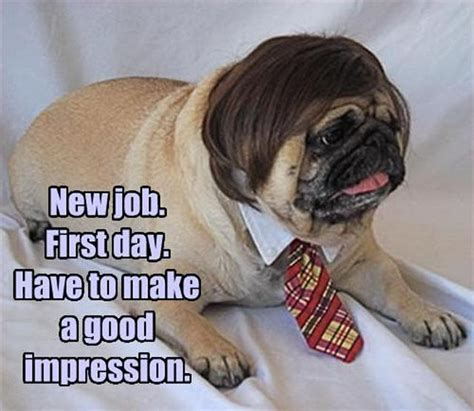How To Make Good Memes - new job first day have to make a good impression memes