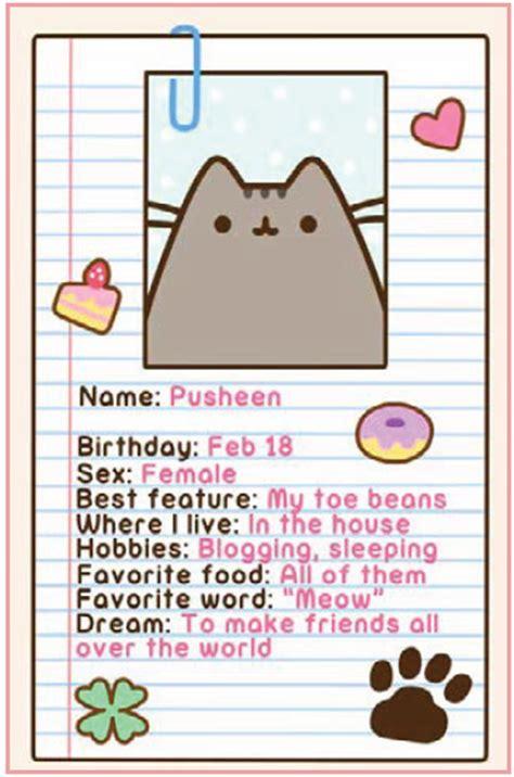 matt is a normal cat books pusheen large pusheen plush and quot i am pusheen the cat