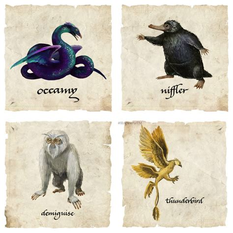 Imaginary Beasts1of 14 quot fantastic beats quot creatures fantastic beasts and where to find them creatures