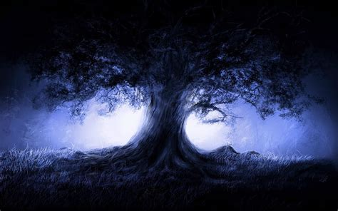 A Tree Miracle Free Miracle Tree Wallpapers And Images Wallpapers Pictures Photos