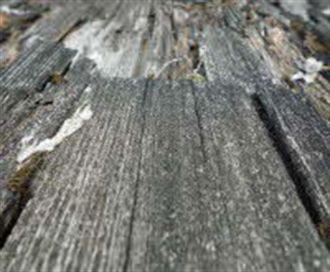 Morsches Holz Ausbessern by Anleitung Furnier Reparieren