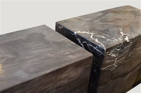 petrified wood bench andrianna shamaris petrified wood log bench for sale at