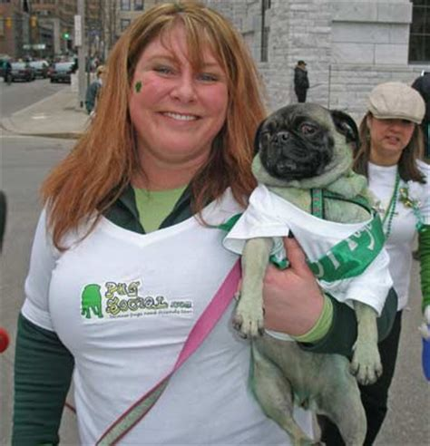 pug breeders in northeast ohio wolfhounds and other animals at cleveland st s day 2008