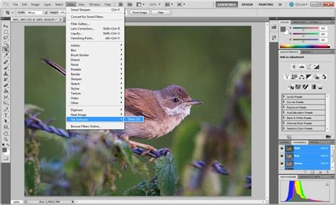 photoshop cs5 noise reduction tutorial photoshop tutorial noise reduction nik software dfine