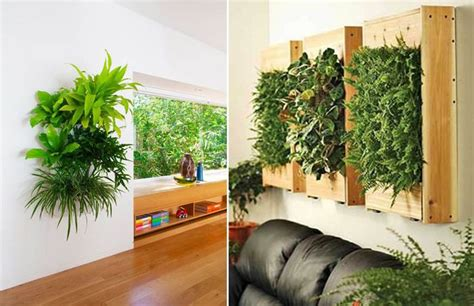 piante grandi da interno piante da parete parete vaso da fiori acquista a poco prezzo