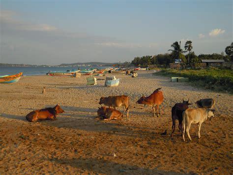 turisti per caso sri lanka trincomalee viaggi vacanze e turismo turisti per caso