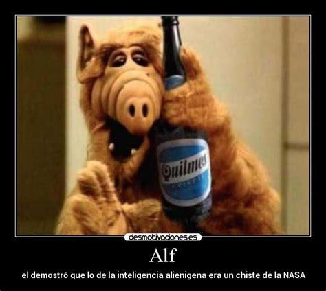 Alf Meme - alf meme