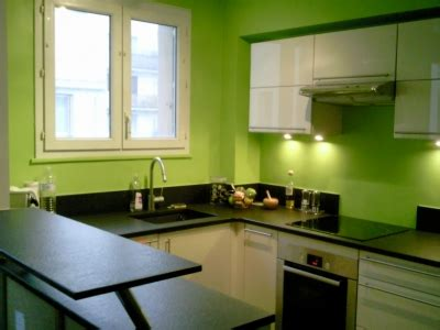cuisine peinte en vert d 233 coration cuisine verte