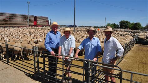 king william trash and treasure this week in the riverina november 6 photos the area news