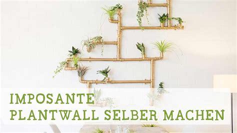 pflanzenwand bauen imposante pflanzenwand selber bauen