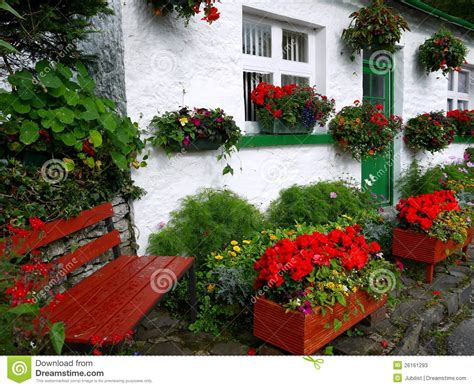 Bloom Box Preserved Flower Uk 10 X10 Cm Beautiful white cottage with flowers and bench stock image image 26161293