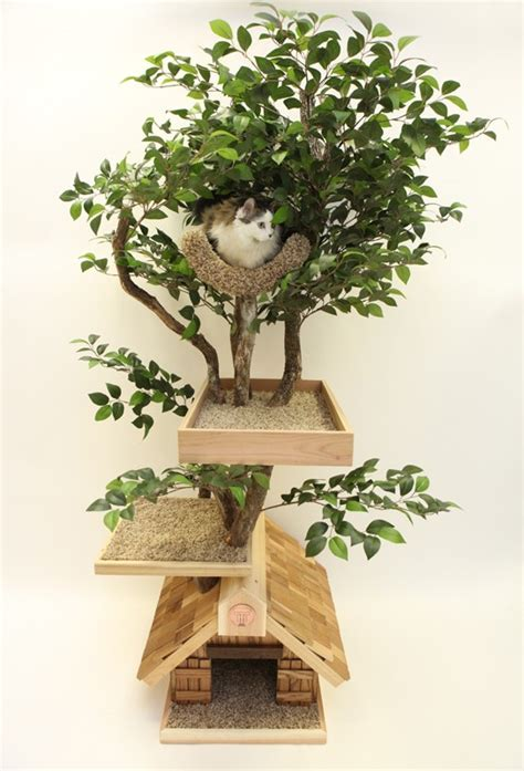 Cat Tree House Myideasbedroom Com