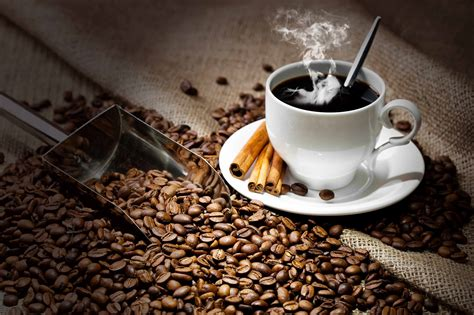 Kopi Aroma Toraja By Bdg Coffee ahaa ini dia 20 jenis kopi yang populer di indonesia