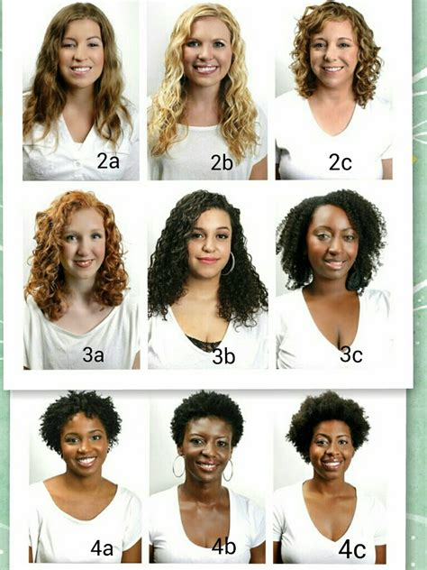 Type Of Hair by Different Hair Curl Types Black Hairstyle And Haircuts