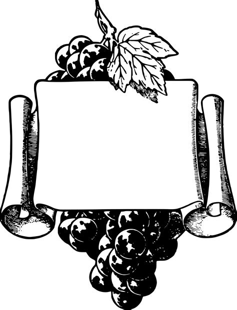 Cool Frame Designs Clipart Wonderful Grapes Frame