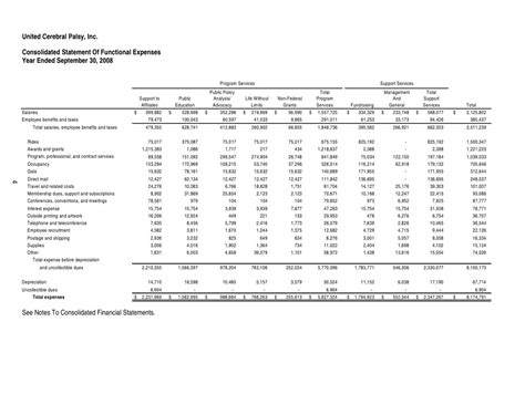 Financial Statement Template Statement Of Functional Expenses Template