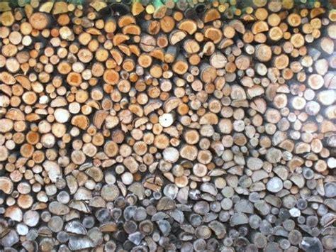 legna x camino quale legna bruciare nelle stufe e nei caminetti