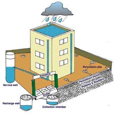 strategic harvest system how to through the buck management glass ceiling books rainwater harvesting sswm