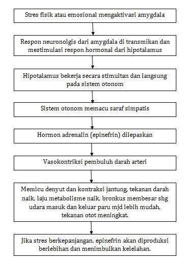 Obat Anti Cemas by Blok 13 Kedokteran Jiwa Medicalstudentnotes