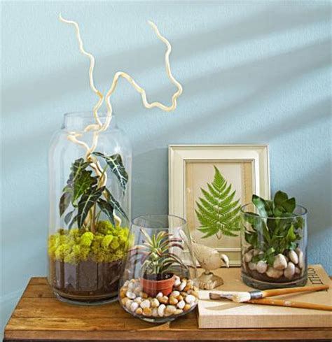indoor plants ideas 4 ideas for stylish indoor plant displays midwest living
