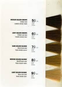 lanza hair color chart lanza hair color chart brown hairs