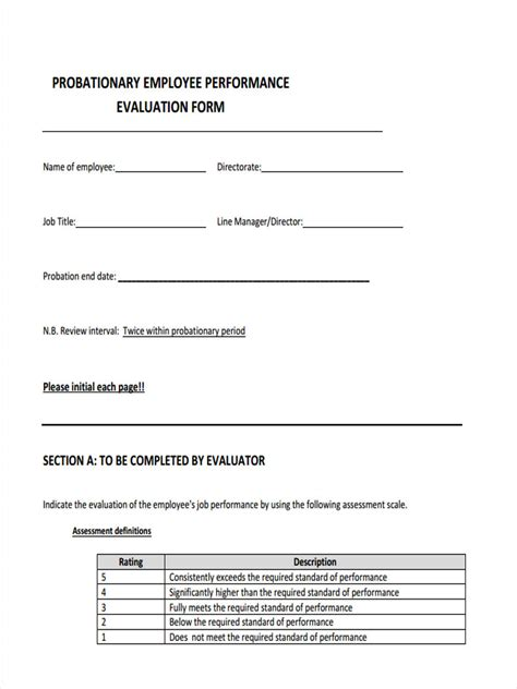 probationary period template 10 probation review form sle free sle exle