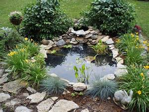 backyard pond plants small pond in front yard ponds pond ideas