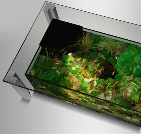Table Aquarium Design by Table Basse Aquarium Design Tables Aquariums