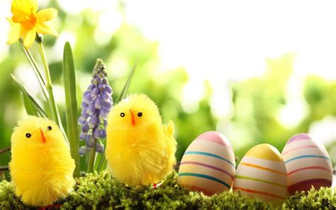 for easter easter wallpaper 15 colorful images