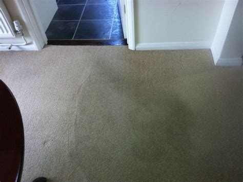 rug cleaning ri carpet cleaning advertising ideas images discount carpet maryland images chem care cleaning