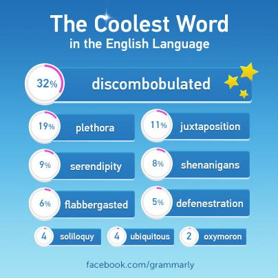 the coolest word in the language grammarly