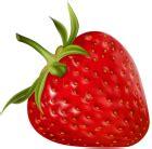 Kawaii Ribbon Usagi Transparent Summer Jacket strawberry png clipart best web clipart
