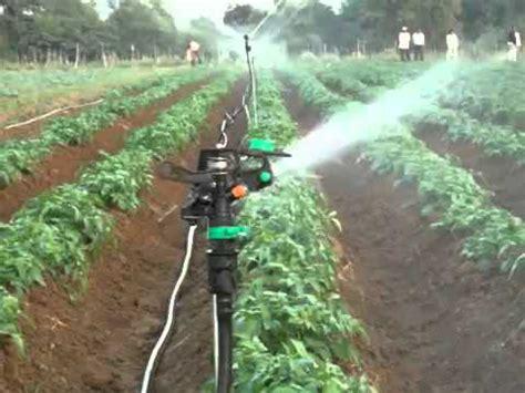 Alat Penyemprot Tanaman Elektrik inovasi pertanian penyemprot tanaman elektrik doovi