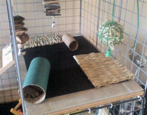 Rabbit Cage Shelf by Wooden Shelves Covered In Tiles With Mats For Grip Pretty