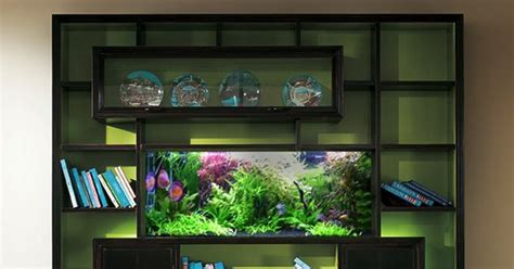 built in bookshelf fish tank the sea