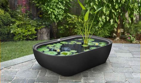 water garden ideas water garden ideas garden365