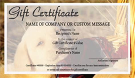 Animal Small Gift Cards Template by Pet Grooming Gift Certificate Templates Easy To Use Gift