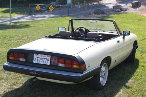 spider ls for sale 1984 alfa romeo spider veloce 2000 for sale