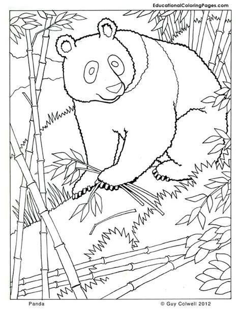 printable zoo animal book free zoo mini book coloring pages