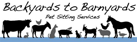 barnyards and backyards backyards to barnyards pet sitting services dog walkers